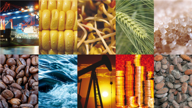 learn commodity trading